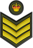 Staff Sergeant S/SGT